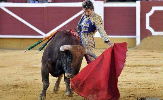 Rubén Sanz, único matador de toros en activo de Soria.