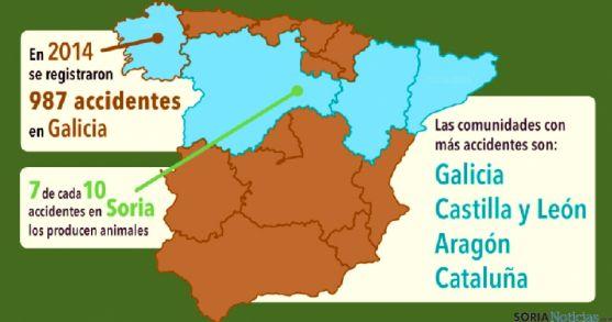 Soria, en el mapa por la alta siniestralidad de animales salvajes en las calzadas.