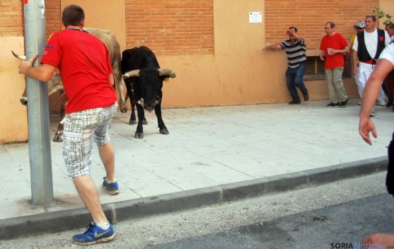 El último de los toros, antes de entrar a La Chata, a las 17.15. / SN