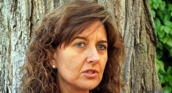 La viceconsejera de Empleo, Begoña Hernández. / SN