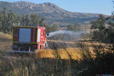 El fuego afectaba a una finca de cereal. / SN