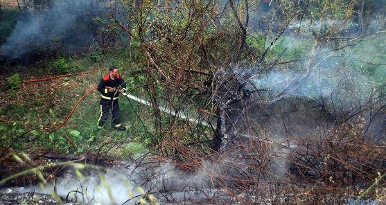 Un bombero sofoca un fuego en las inmediaciones de la capital. / SN