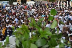 Clausura programa nacional Dieta Mediterránea