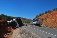 El camión accidentado este lunes. / SN