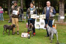 Cachorros machos ganadores