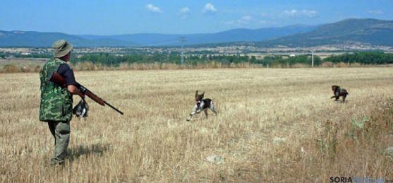 Un cazador soriano en la media veda. / SN