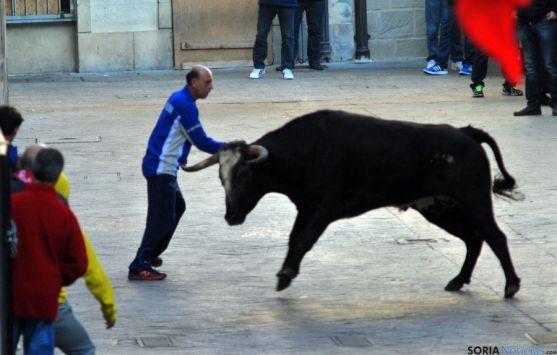 Los encierros de Ágreda son festejos taurinos tradicionales. / SN