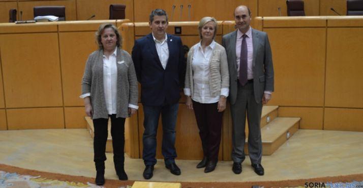 Cadidatos socialistas de Soria al Congreso y Senado