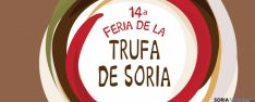 XIV Feria de la Trufa en Abejar