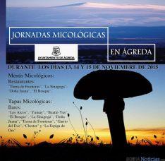 La micología, protagonista en Ágreda.