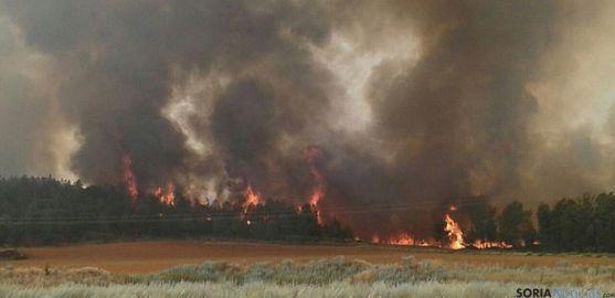 El incendio de Barcebalejo, pedanía burgense, uno de los mayores de la campaña. / SN