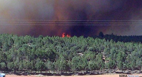 Imagen de archivo del incendio en Barcebalejo. / SN