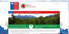 Imagen del portal de medioambiente chileno. / Cesefor