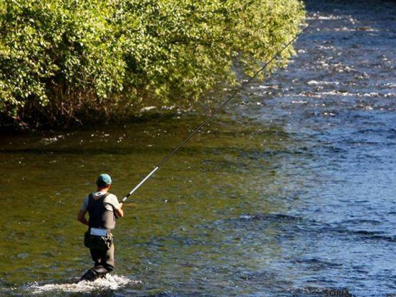 La Junta regula la pesca en 2016.