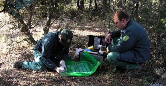 Agentes medioambientales de la Junta.