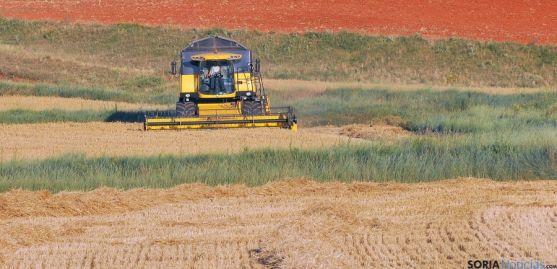 Una cosechadora faenando en un campo de la provincia. / SN