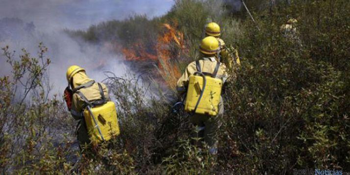 El objetivo es prevenir los incendios forestales.