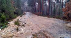 Pista forestal en Pinares hoy jueves./AS