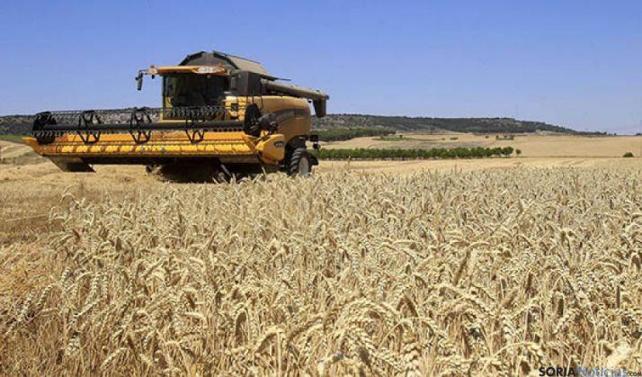 Una máquina en un campo de cereal./SN