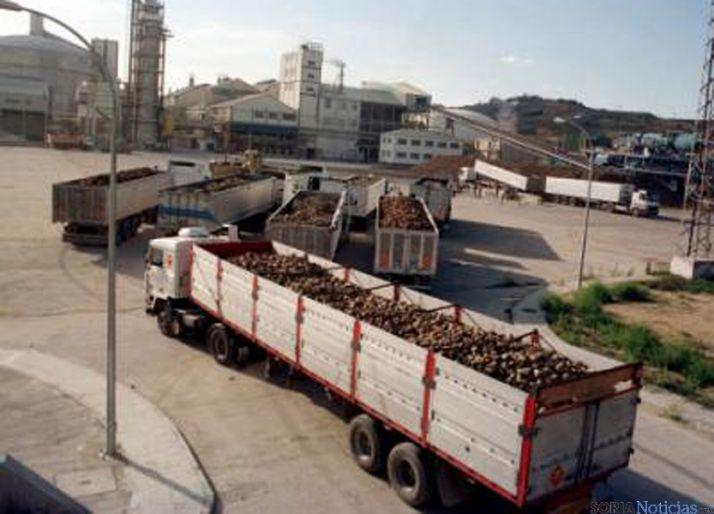 Camiones con remolacha. / SN