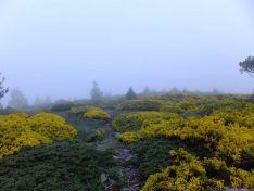 Paisaje con niebla en el Moncayo./GC
