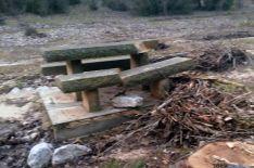 Foto 3 - Asden denuncia la tala de chopos en el Cañón del Río Lobos