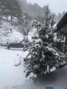 Nieve en Pinares