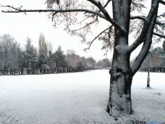 Parque de la Dehesa de Soria, esta mañana