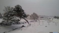 Imagen de la nevada en Duruelo