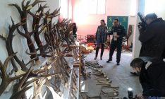 Detienen a cuatro vecinos de Soria que podrían ser los autores de medio centenar de robos en la provinc