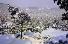 Nevada en Duruelo el pasado febrero./SN