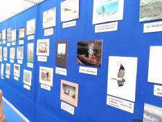 Fotografías del concurso