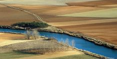 Paisaje del Duero entre tierras de cultivo en la provincia. / Ana Isla