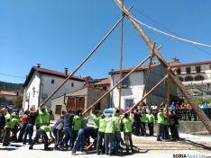 Últimos esfuerzos para erguir el Mayo de 2016 en la plaza de Cabrejas del Pinar