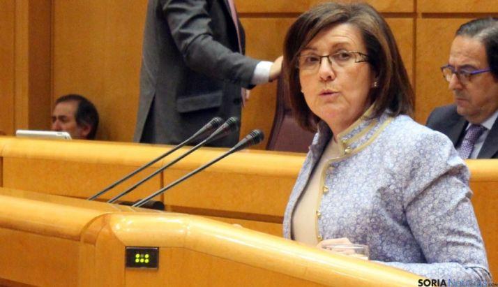 Marimar Angulo en una intervención en el Senado. / SN