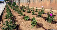 Uno de los jardines con el sistema instalado.