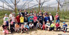 Los escolares en uno de los campos de frutales. / Jta.