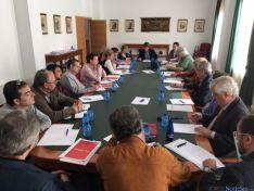 Foto 2 - El Comité Numancia 2017 encara la preparación de los actos conmemorativos