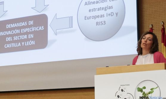 La consejera Milagros Marcos, en la presentación del proyecto. / Jta.