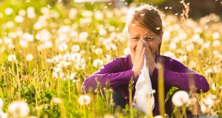 Un 20 por ciento de castellano-leoneses sufren alergías por el polen.