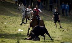 El caballo herido y el novillo con un mozo tendido en el suelo tras la cogida. / SN