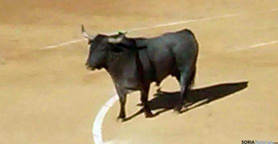 El toro cornipaso devuelto el Sábado Agés./SN
