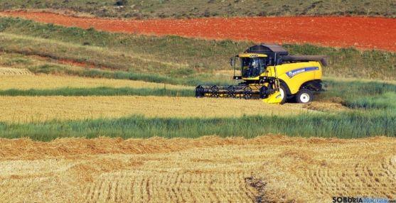 Una cosechadora en una imagen de archivo. / SN