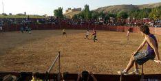 Las peñas se divierten en la plaza de toros./SN