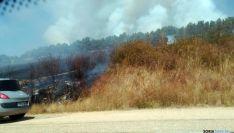 Imagen del incendio. / Á. Borque