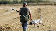 Cientos de cazadores saldrán en busca de la codorniz