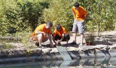 Voluntarios de medioambiente en una actividad. /Junta.