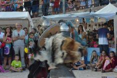 XVII edición del Mercado Medieval en Berlanga de Duero, Soria. / DDM.