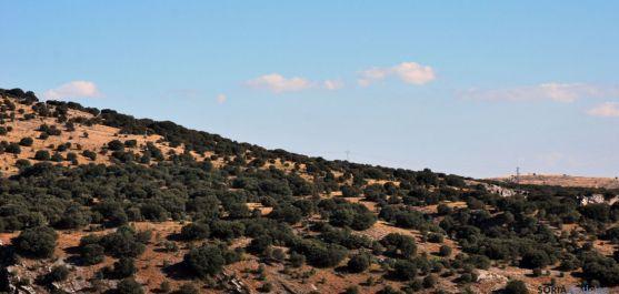 Imagen de la sierra de Santa Ana esta tarde. / SN