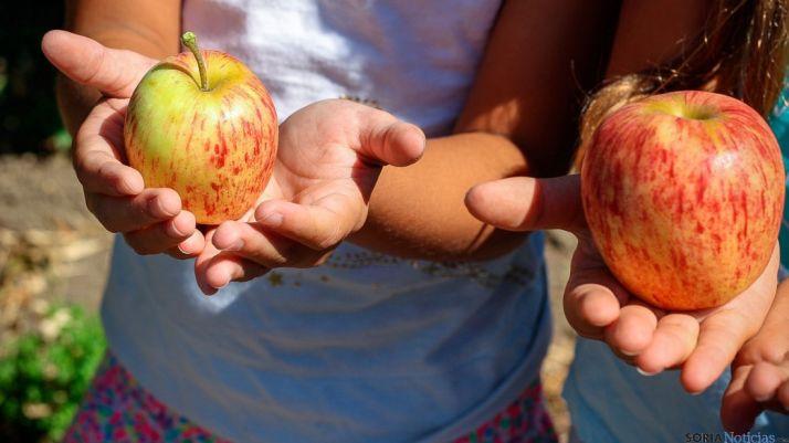 Se pretende promover los productos de temporada ecológicos.